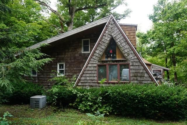 13688 N 130 East Road, HOMER, IL 61849 (MLS #10829274) :: Helen Oliveri Real Estate