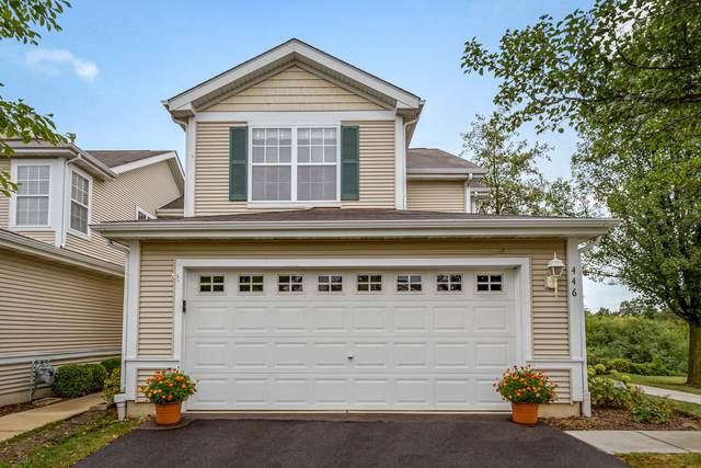 446 N Carlisle Court, Round Lake, IL 60073 (MLS #10829334) :: John Lyons Real Estate