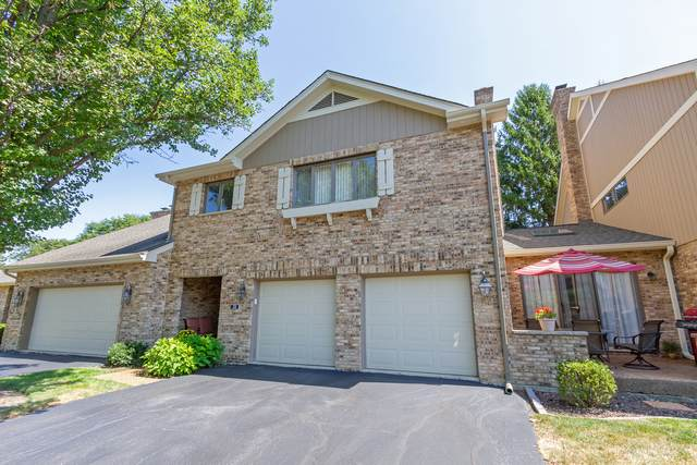 133 Castle Rock Lane, Bloomingdale, IL 60108 (MLS #10829905) :: John Lyons Real Estate