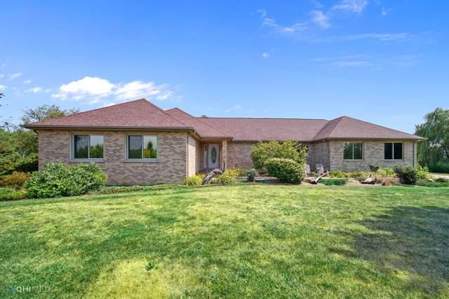 30419 S Egyptian Trail, Peotone, IL 60468 (MLS #10830354) :: Littlefield Group