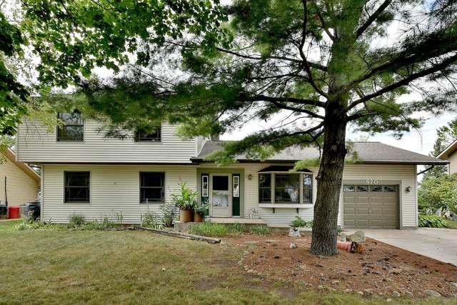 670 Coral Avenue, Bartlett, IL 60103 (MLS #10830396) :: John Lyons Real Estate