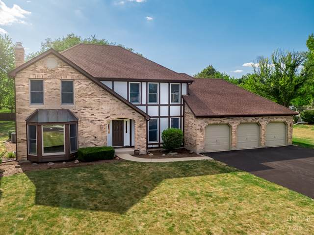 410 Greens View Drive, Algonquin, IL 60102 (MLS #10830537) :: Ryan Dallas Real Estate