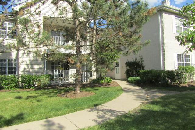 784 N Gary Avenue #210, Carol Stream, IL 60188 (MLS #10830694) :: John Lyons Real Estate