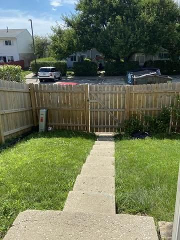 Bolingbrook, IL 60440 :: John Lyons Real Estate