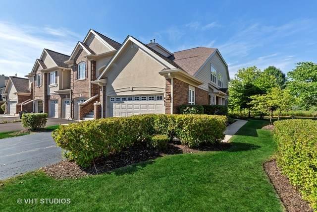 461 Saddlebrook Lane #461, Vernon Hills, IL 60061 (MLS #10835080) :: John Lyons Real Estate