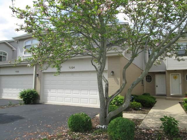 1024 Silvana Court, Schaumburg, IL 60173 (MLS #10835717) :: John Lyons Real Estate