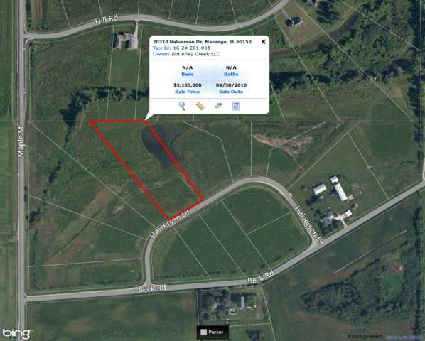 20318 Halverson Drive, Marengo, IL 60152 (MLS #10836257) :: Littlefield Group