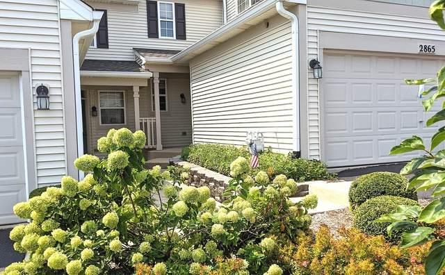 2865 Vernal Lane, Naperville, IL 60564 (MLS #10836807) :: John Lyons Real Estate