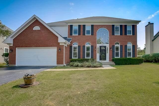 251 Cambridge Drive, Grayslake, IL 60030 (MLS #10837518) :: Littlefield Group