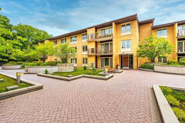 2420 W Talcott Road #209, Park Ridge, IL 60068 (MLS #10838495) :: Littlefield Group