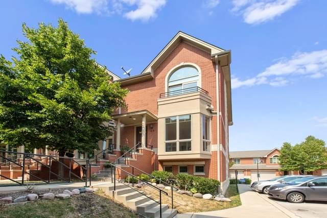 63 Northfield Terrace, Wheeling, IL 60090 (MLS #10838766) :: Littlefield Group