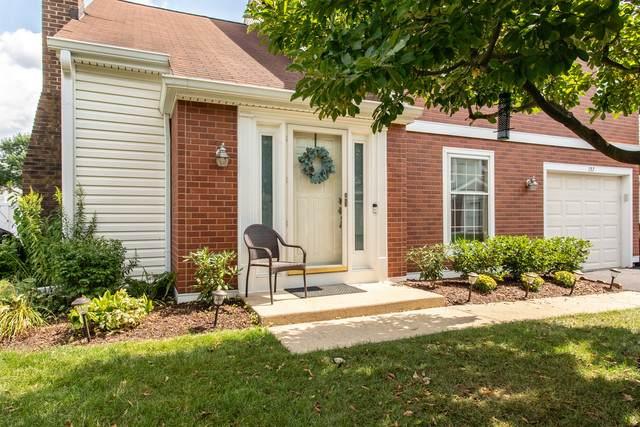 157 S Stonington Drive, Palatine, IL 60074 (MLS #10838782) :: John Lyons Real Estate