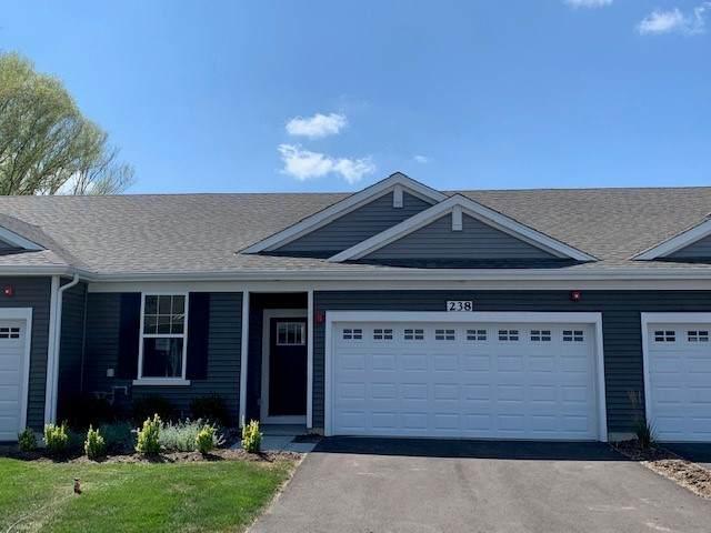 238 Sussex Lane, North Aurora, IL 60542 (MLS #10838822) :: John Lyons Real Estate