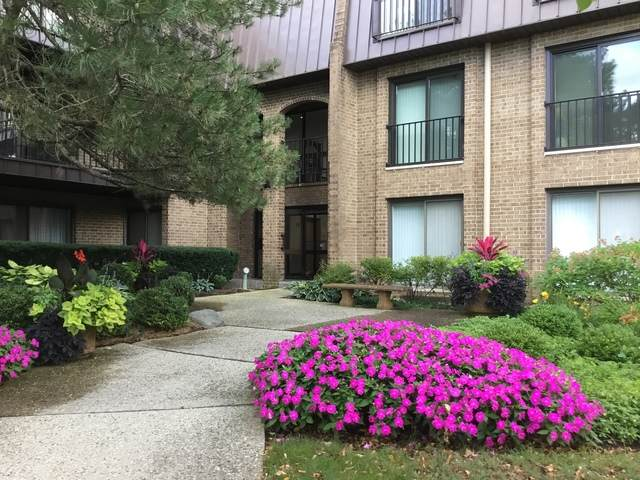 1 The Court Of Harborside Drive #206, Northbrook, IL 60062 (MLS #10839340) :: John Lyons Real Estate