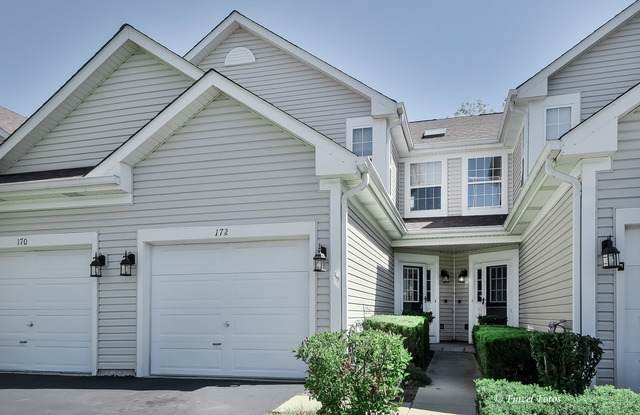172 Northlight Passe, Lake In The Hills, IL 60156 (MLS #10839362) :: John Lyons Real Estate