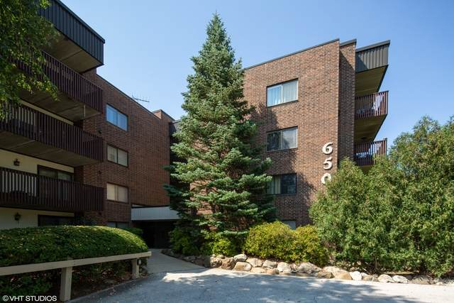 650 Whitney Court #202, Gurnee, IL 60031 (MLS #10839445) :: Property Consultants Realty