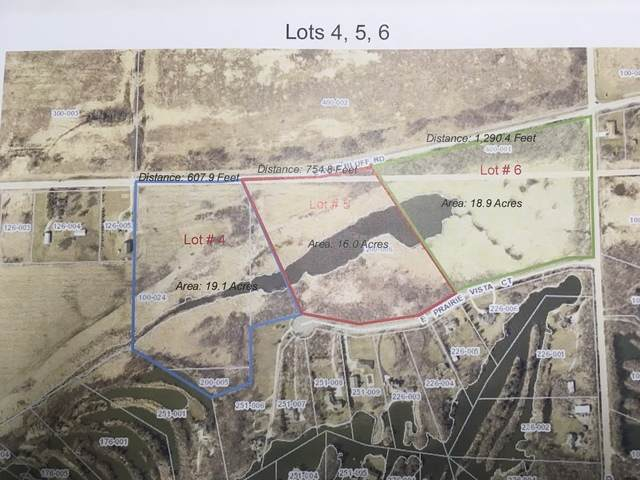 4655 Pine Bluff Road, Morris, IL 60450 (MLS #10840589) :: Ryan Dallas Real Estate