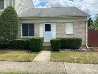 411 Standish Court, Bolingbrook, IL 60440 (MLS #10840715) :: John Lyons Real Estate