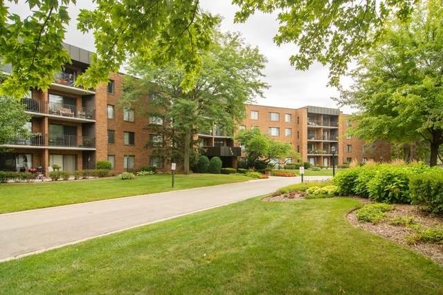 950 E Wilmette Road #101, Palatine, IL 60074 (MLS #10840888) :: John Lyons Real Estate