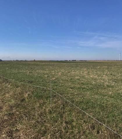 Lot 153 N 1700E Road, Cabery, IL 60919 (MLS #10841316) :: John Lyons Real Estate