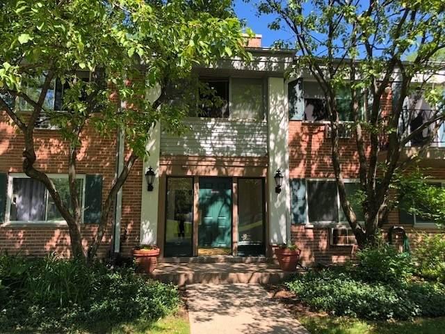 715 E Falcon Drive E111, Arlington Heights, IL 60005 (MLS #10841622) :: The Wexler Group at Keller Williams Preferred Realty