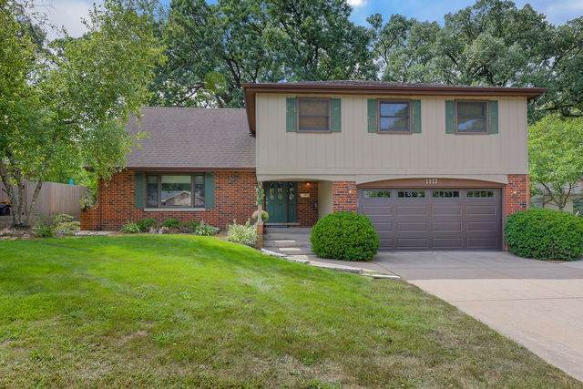 1113 Black Oak Drive, Downers Grove, IL 60515 (MLS #10842104) :: Janet Jurich