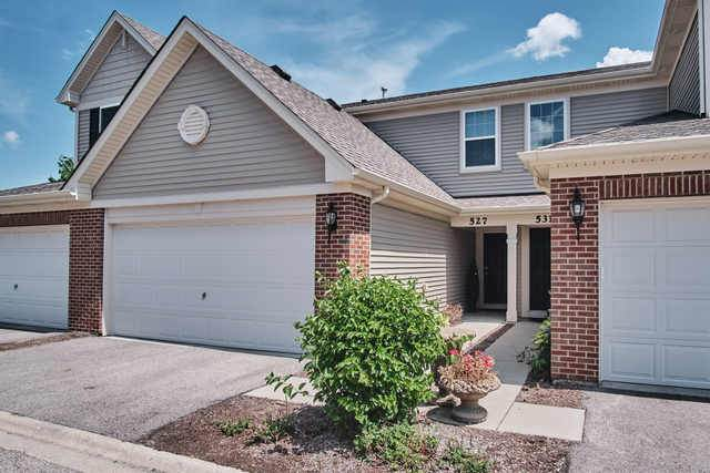 527 Silverton Drive, Grayslake, IL 60030 (MLS #10842168) :: John Lyons Real Estate