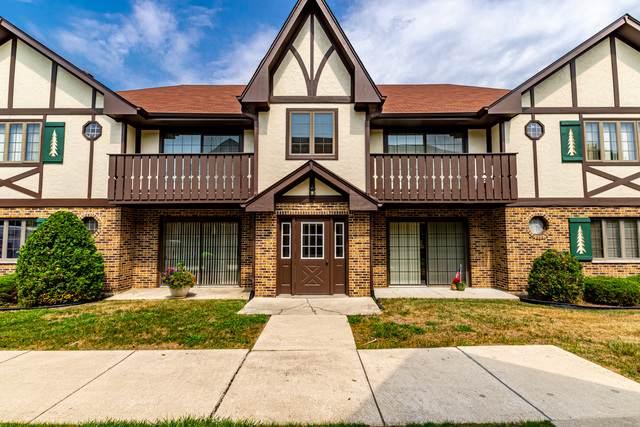 11559 Autobahn Drive E #202, Palos Park, IL 60464 (MLS #10842396) :: John Lyons Real Estate