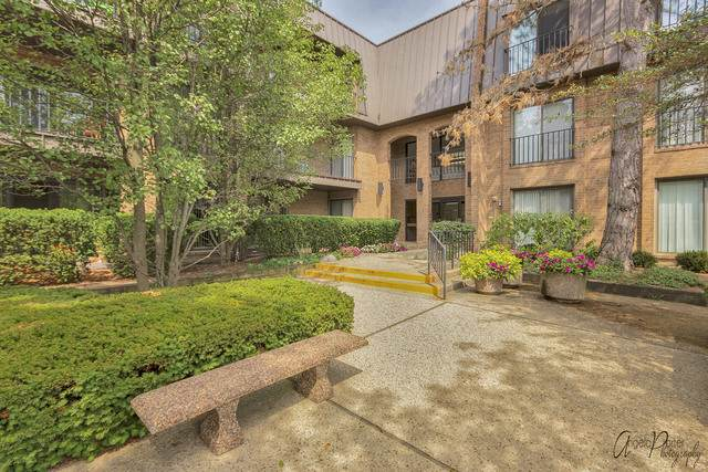 3 The Court Of Harborside #301, Northbrook, IL 60062 (MLS #10842641) :: John Lyons Real Estate