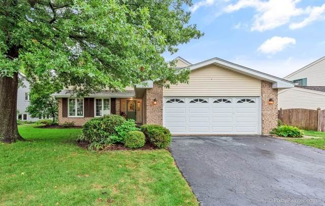 937 Pin Oak Circle, Cary, IL 60013 (MLS #10842766) :: Property Consultants Realty