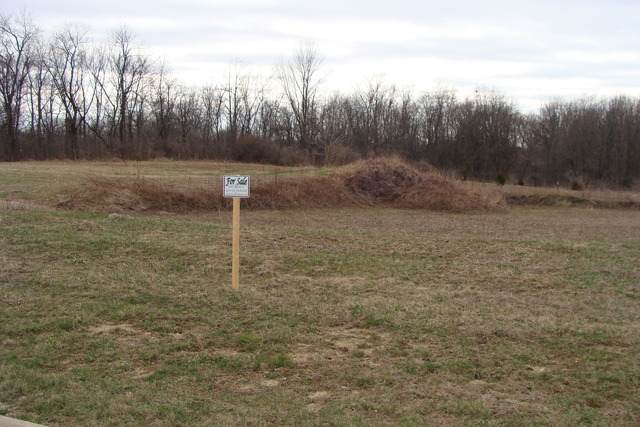 6267 Ravine Court, Yorkville, IL 60560 (MLS #10844622) :: O'Neil Property Group