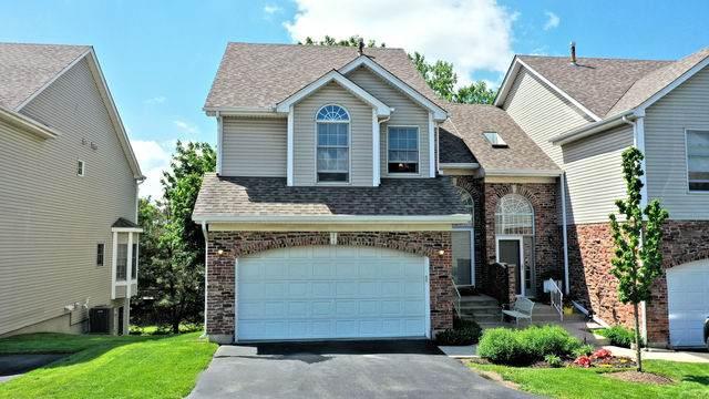 573 Bridge View Court, Palatine, IL 60067 (MLS #10845110) :: John Lyons Real Estate