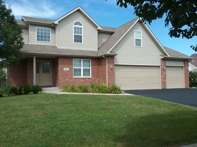 233 Aspen Drive, Beecher, IL 60401 (MLS #10845125) :: Property Consultants Realty