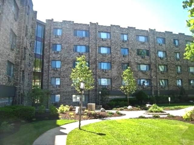 5306 N Cumberland Avenue 313-3, Chicago, IL 60656 (MLS #10845152) :: Helen Oliveri Real Estate