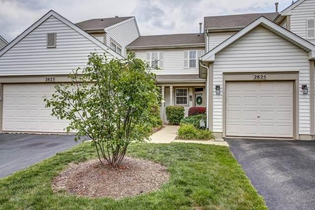 2825 Gypsum Circle, Naperville, IL 60564 (MLS #10845204) :: John Lyons Real Estate