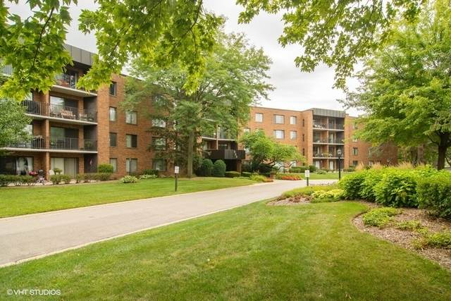 950 E Wilmette Road #417, Palatine, IL 60074 (MLS #10845979) :: John Lyons Real Estate