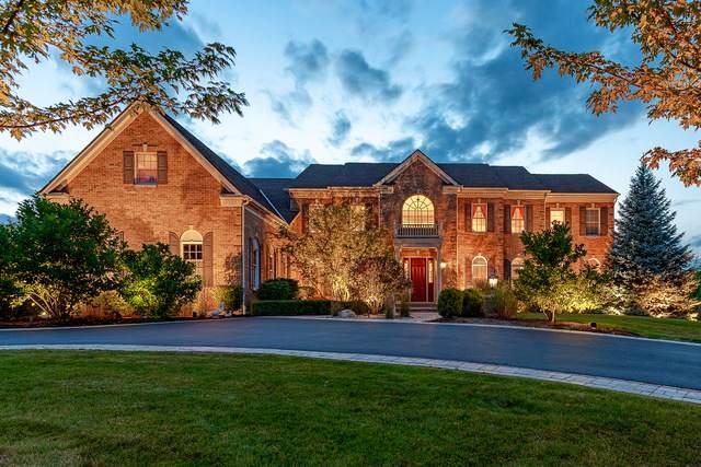 74 Wood Oaks Drive, South Barrington, IL 60010 (MLS #10846017) :: Lewke Partners