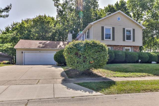 304 Indian Hills Drive, Rantoul, IL 61866 (MLS #10846140) :: Property Consultants Realty