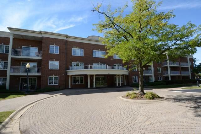 124 Day Street #211, Bloomingdale, IL 60108 (MLS #10846541) :: John Lyons Real Estate