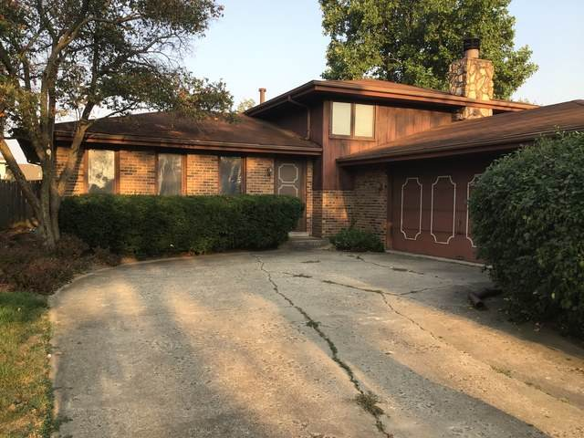 10717 S Palos Drive, Palos Hills, IL 60465 (MLS #10846547) :: Property Consultants Realty