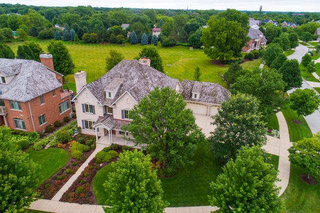 224 Claremont Drive, Naperville, IL 60540 (MLS #10848200) :: John Lyons Real Estate