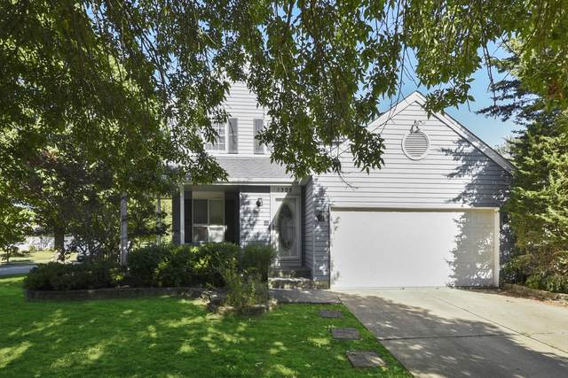 1305 Creighton Avenue, Naperville, IL 60565 (MLS #10848250) :: The Wexler Group at Keller Williams Preferred Realty