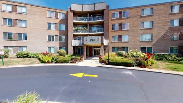 900 E Wilmette Road #207, Palatine, IL 60074 (MLS #10848356) :: John Lyons Real Estate
