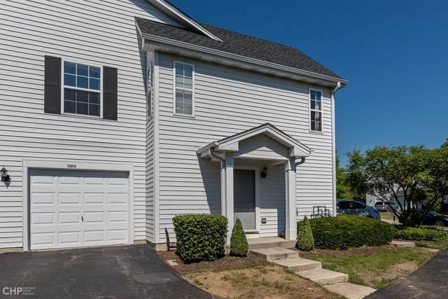 1313 Orleans Drive #1313, Mundelein, IL 60060 (MLS #10849002) :: Littlefield Group