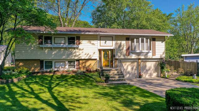 6748 Valley View Drive, Downers Grove, IL 60516 (MLS #10849135) :: Ryan Dallas Real Estate