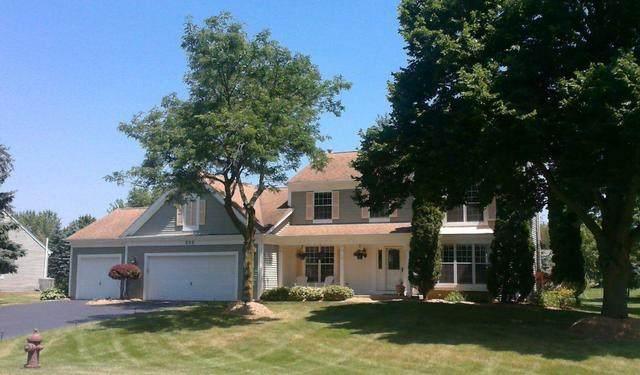 509 Belmont Parkway, Sleepy Hollow, IL 60118 (MLS #10849544) :: The Wexler Group at Keller Williams Preferred Realty