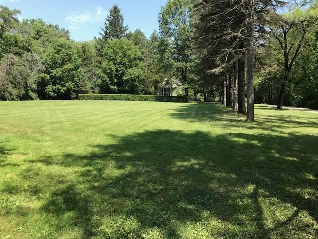 1047 Plank Road, Naperville, IL 60563 (MLS #10850014) :: Ani Real Estate