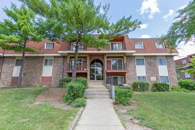 580 Hill Drive 3-202, Hoffman Estates, IL 60169 (MLS #10850277) :: John Lyons Real Estate