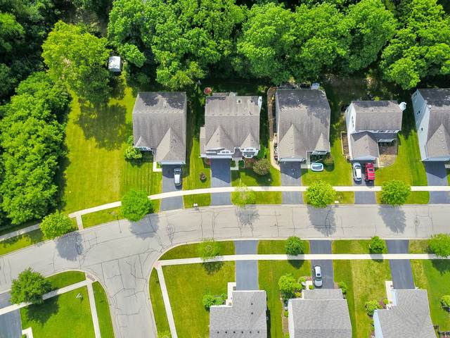 1805 Butterfield Road, Woodstock, IL 60098 (MLS #10850568) :: Suburban Life Realty