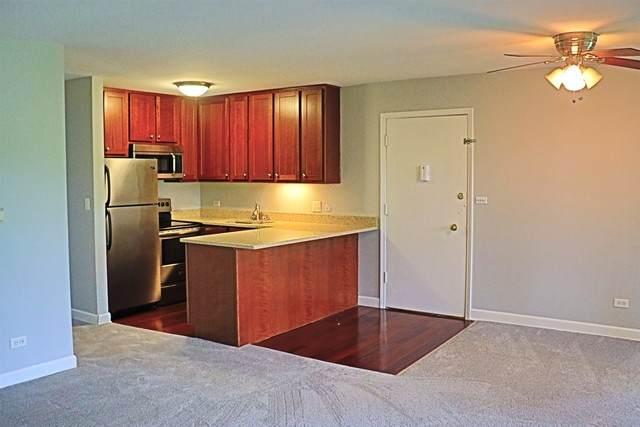 5511 E Lake Drive F, Lisle, IL 60532 (MLS #10850885) :: John Lyons Real Estate